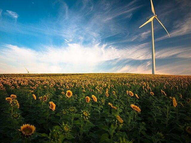 Erneuerbare-Energien-Aktien steigen mit sinkenden Produktionskosten