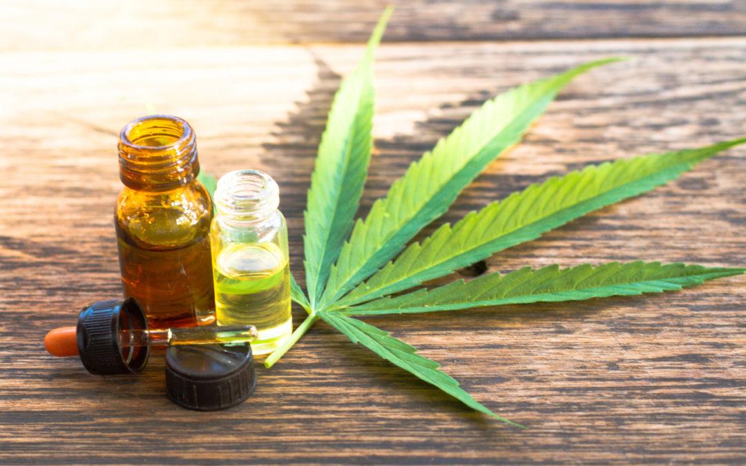 Cannabis: Deutschland vergibt erst Lizenzen