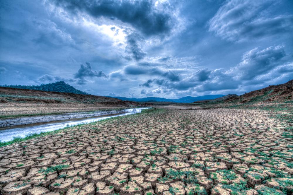 Mit Klima-Aktien 40% mehr verdienen