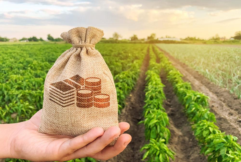 Die Agrarwirtschaft entwickelt sich zur Wachstumsbranche des 21. Jahrhunderts