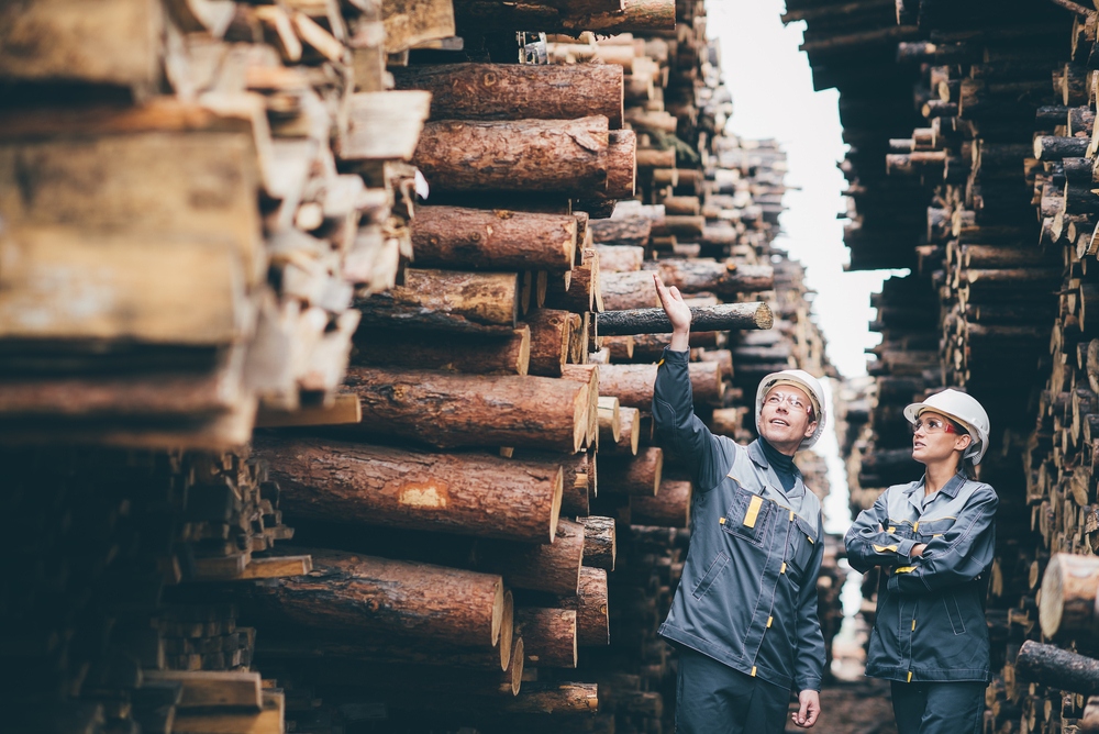 Deutsche Eigenheime werden durch Holzmangel in den USA teurer