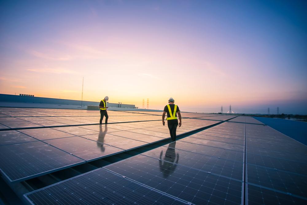 Disruption in der Photovoltaik: Jetzt Strom und Salat gleichzeitig produzieren